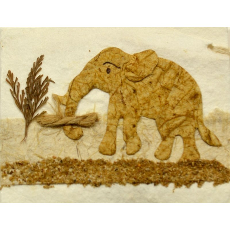 NATURE ELEPHANT 010 gift tag